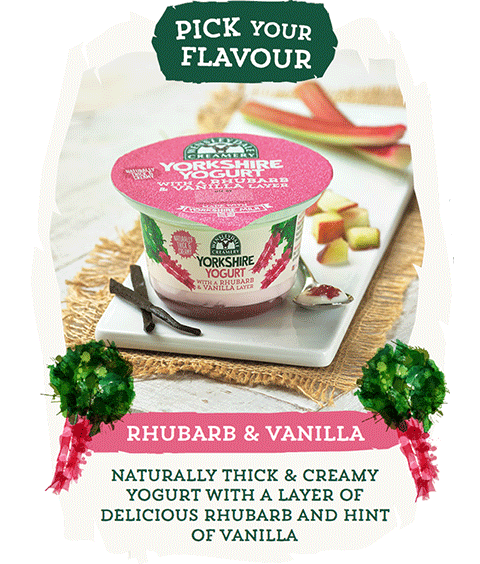 Pick your flavour - Rhubarb & Vanilla